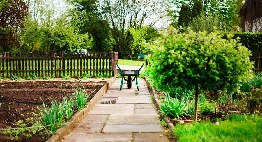Mental Health Awareness Week - Let Nature Nurture You