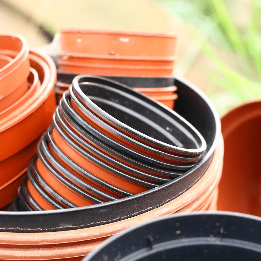 plant pots sow indoors