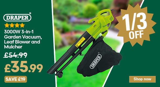 Save 1/3 on your draper garden leaf blower
