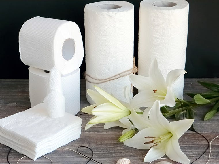 Kitchen & Toilet Roll in Household & Cleaning