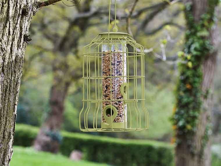 Outdoor Living - Bird Care