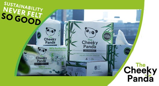 The Cheeky Panda products