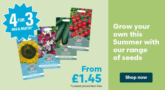 Get 4 for 3 on seeds this summer