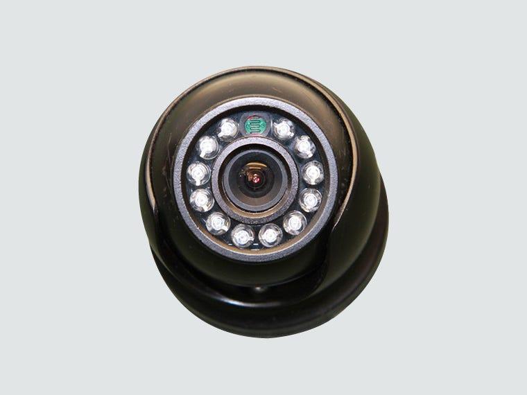 Bird Cameras - Birdcare
