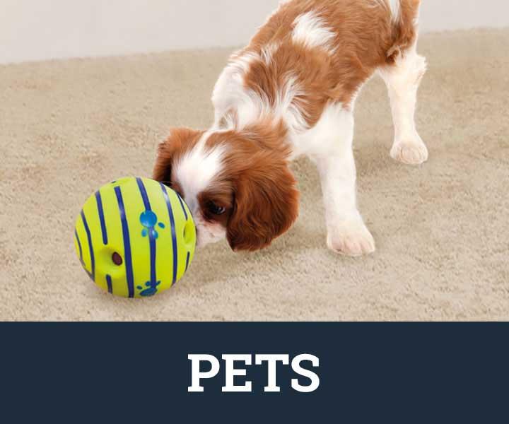 JML pets