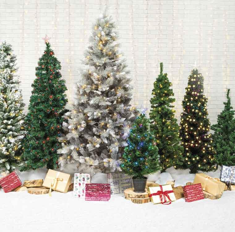 Christmas Trees at Robert Dyas