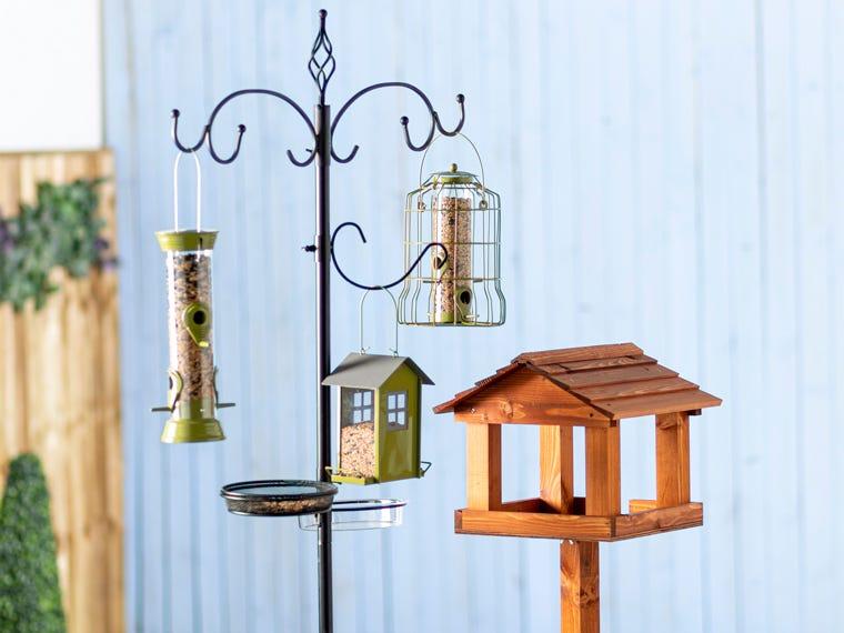 Bird Care Special Offers