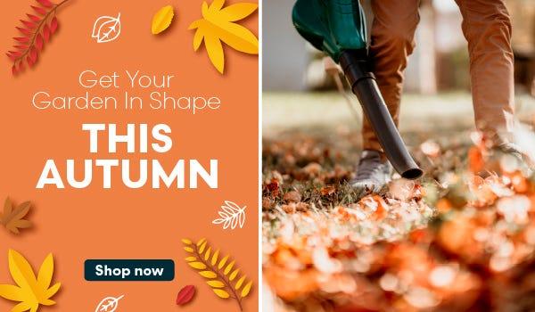 Shop gardening this autumn