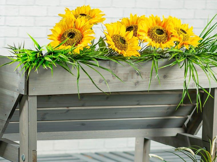 Pots & Planters Garden Deals