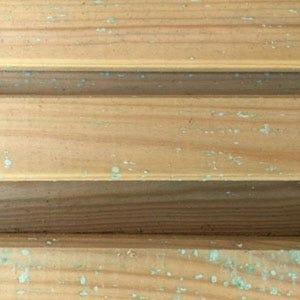 Green & White Spots - Understanding Timber